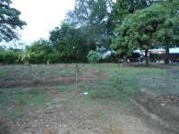 imagen-8