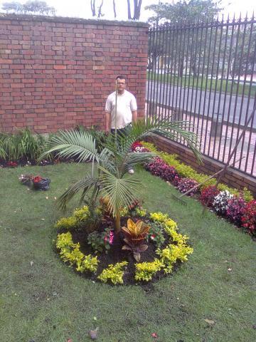 Dise o y elaboracion de jardines mantenimiento todo lo for Fabricacion de jardines